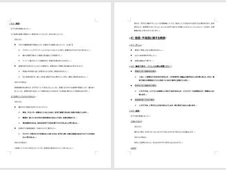 面接/ES対策オプションの流れ ③