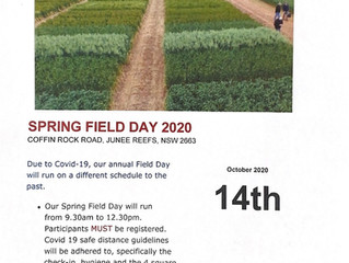 SPRING FIELD DAY - 14TH OCTOBER 2020