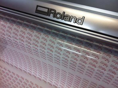 Roland Print Cut Plotter