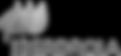iberdrola-342x158_edited.png
