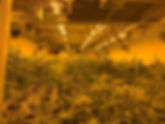 JOS PIC 1.jpg