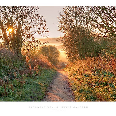 Holmes 20.03.19 -  Cotswold Way near Chi