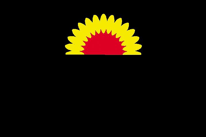 Logo Girasole trasp sito rifatto.png