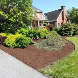 Edged and Mulched