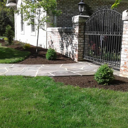 Relandscaping