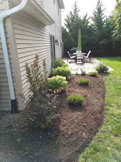 New patio in the rear, new installation and mulching in the front
