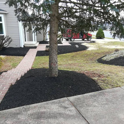 Freshly Mulched Beds