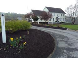Early Spring Mulch