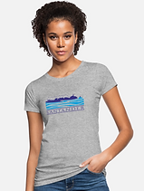 santander spreadshirt.png
