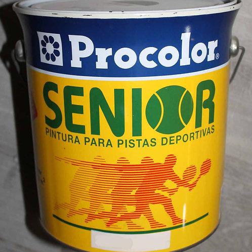 PINTURA PARA SUELOS SENIOR. 4 L.