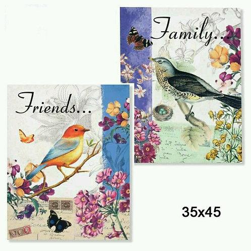 Lote de dos cuadros pájaros