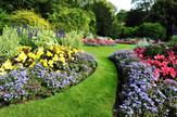Offering Garden Maintenance Service