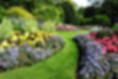 Permaculture garden landscape.