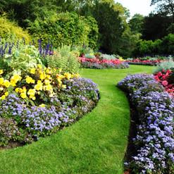 Pretty Garden