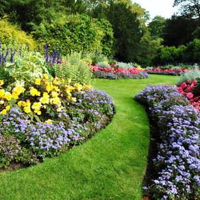 5 อันดับ ทุ่งสวน ที่คนส่วนใหญ่เที่ยวกัน | เที่ยวไหนดี เที่ยวทุ่งสวนที่ไหนดี