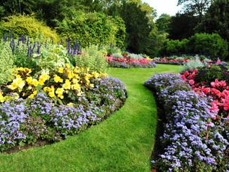Landscaping in Dorset