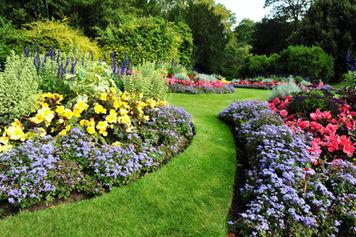 Çiçekli Bahçe