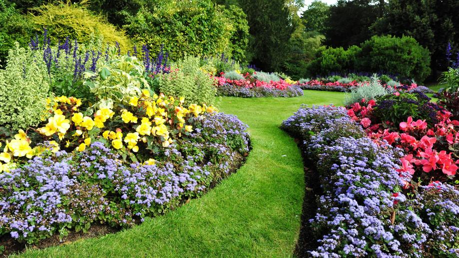 Oldukça Bahçe