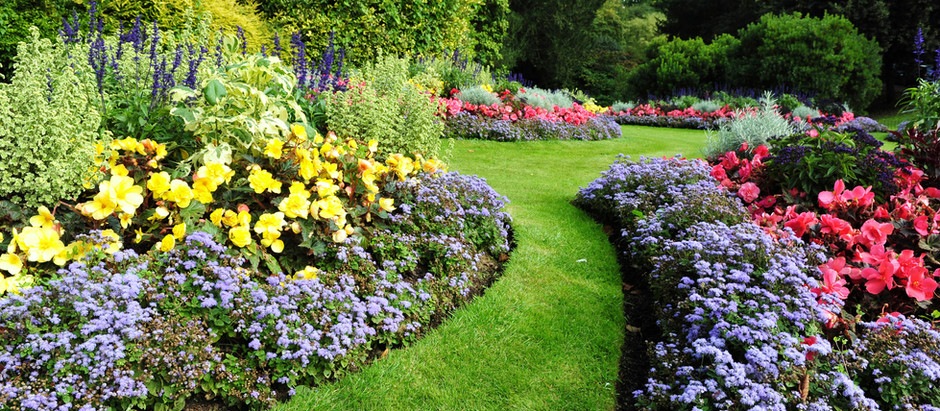 Trends in Multifamily Property Landscaping