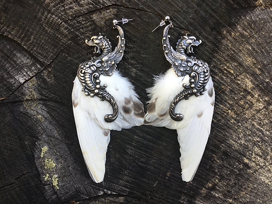 Parakeet Wings with Silver Plated Dragons Ear Wings