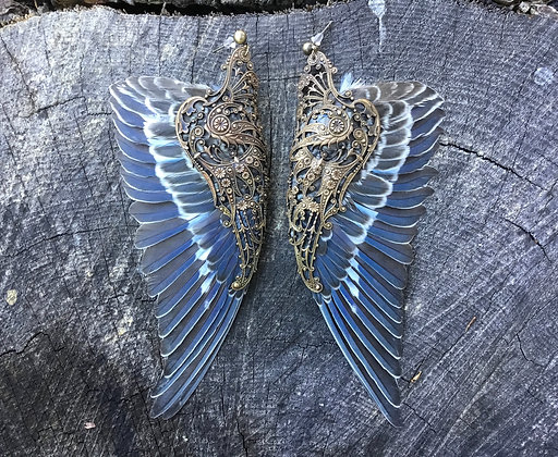 Budgie Parakeet Earwings
