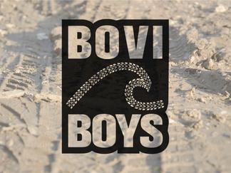 Bovi Boys - Logo