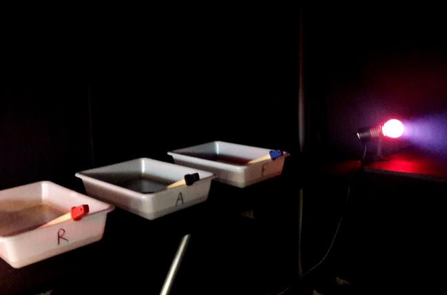 laboratoire photo mobile