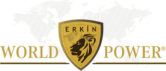 Logo Erkin World Power