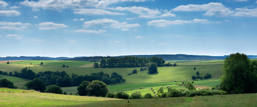 Ardennen.jpg
