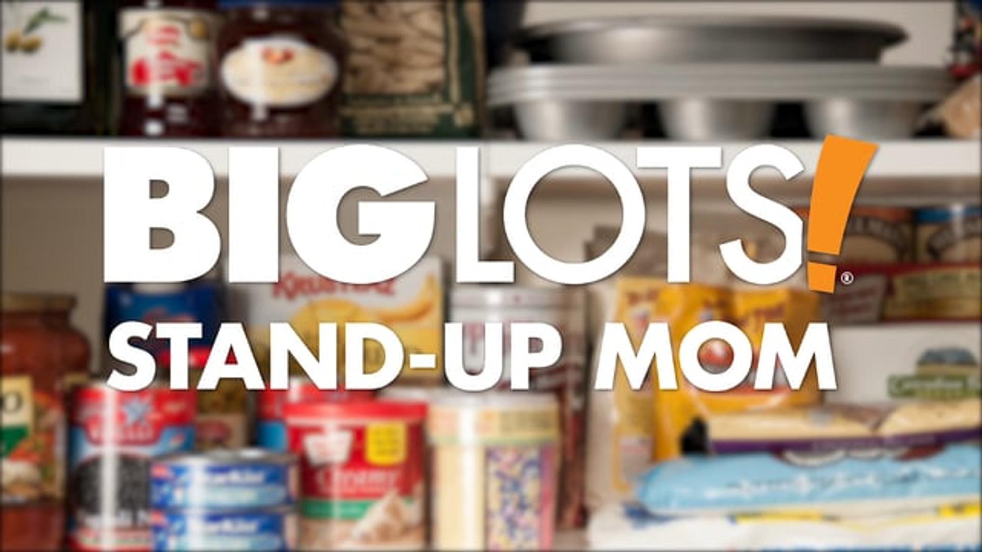 BIG LOTS - STAND-UP MOM - STOCKTOBER