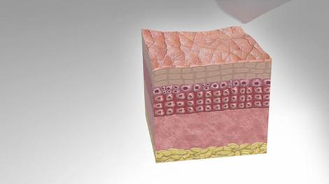 Karuna Skincare
