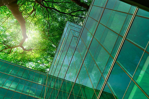 Eco-friendly building in the modern city. Green tree branches with leaves and sustainable