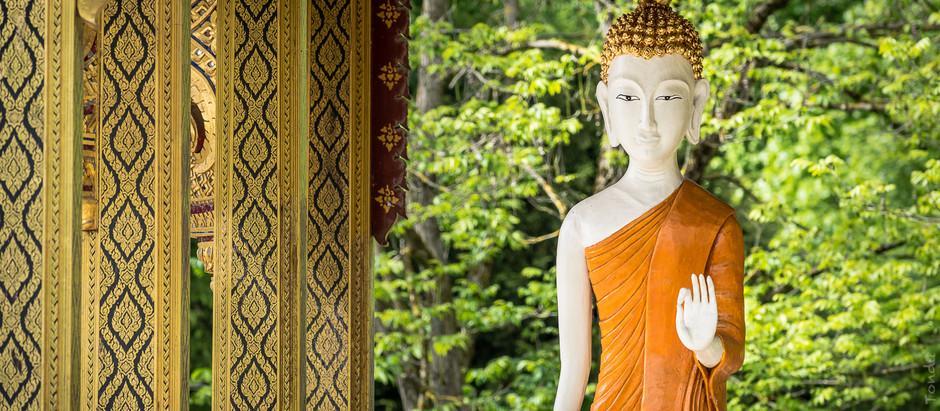 Ein Buddha zu Beginn