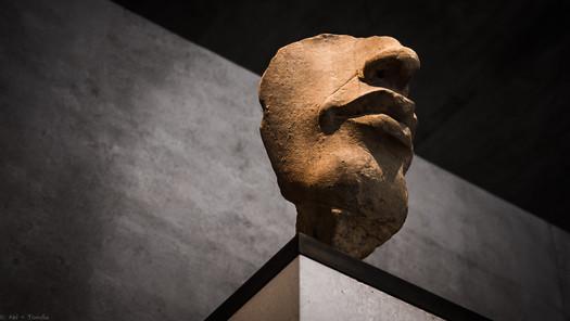 Der Ketzerkönig - © zoo-o-grafie - AWa / Museum ägyptischer Kunst