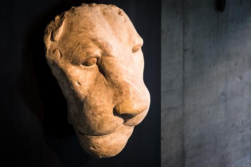 Sechmet die Wilde - © zoo-o-grafie - AWa / Museum ägyptischer Kunst