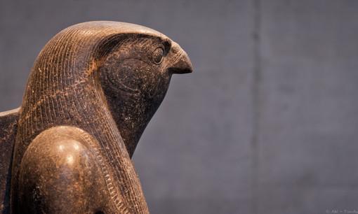 Horus - © zoo-o-grafie - AWa / Museum ägyptischer Kunst