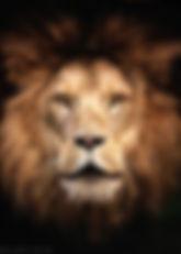 Der Rufer - © zoo-o-grafie / AWa - Tierpark Hellabrunn