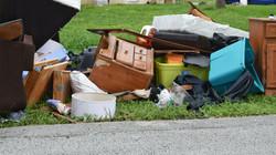 domestic-waste-2