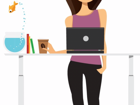 sit stand desks improve productivity
