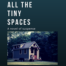 All the Tiny Spaces Graphic.png