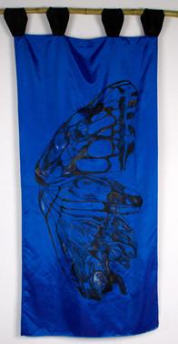 """""""Blue Morpho- Peruvian Rainforest"""""""