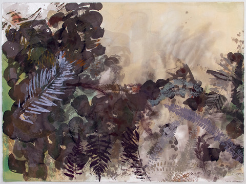 """""""Plants Ghosting (Pre-Angiosperm Relics, Summertime)"""""""