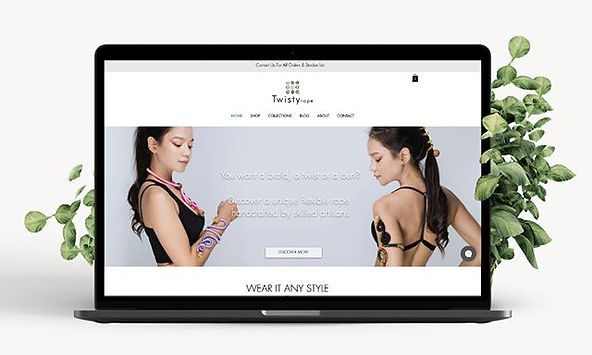 Website Design for Twisty Rope _ Accesso