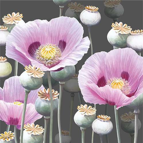 Floral blank greeting card with pink poppies and poppy seed heads.