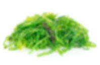a-portion-of-wakame-seaweed-P2K28P9.jpg