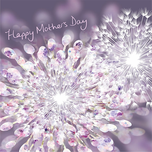 Flower Art / Floral Mother's day / Mothering Sunday Card 'Allium Explosion'
