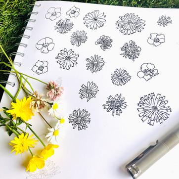 summer lawn drawing