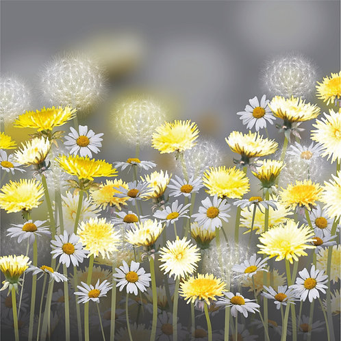 Flower Art / Floral Greeting Card 'Dandelion and Daisy Meadow'