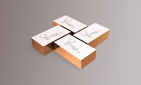 business card - 3.5x2in 2 - view 1.png