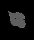 logo lemon dealer studio.png